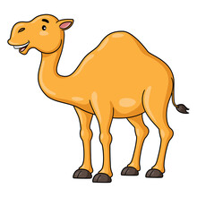 Camel Cartoon Smiling