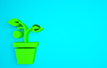 Green Plant In Pot Icon Isolated On Blue Background. Plant Growing In A Pot. Potted Plant Sign. Minimalism Concept. 3d Illustration 3D Render.