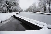 Gefrorener Kanal Rhone Au Rhin Im Elsass