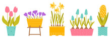 Set Of Spring Potted Flowers. Tulips, Crocuses, Daffodil, Muscari, Hyacinth. Plants Isolated On White Background. Vector Illustration In Flat Style.