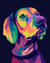Labrador Retriever In Style Pop Art