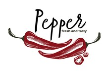 Pepper Fresh And Tasty Herbs And Spices Vector