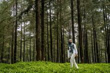 Young Woman Hiking Pine Wood