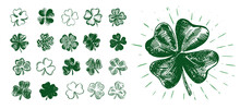 Happy Patrick's Day. Clover Set. Hand Drawn Illustration.