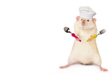 Funny Cute Chef Rat In A Chef's Cap On A White Background