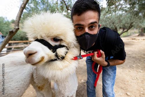 Fototapeta premium Portrait Of Young Man And His Alpaca