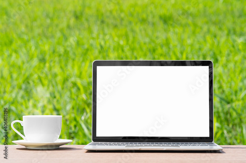 Fotografia, Obraz laptop and cofree cup on wood plank agent grass field