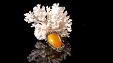 Yellow Baltic Amber Pendant On A White Coral. Isolated Amber Jewelry On A Black Background.