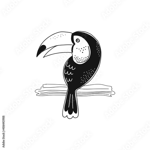 Fototapeta premium Toucan sitting on branch isolated illustration isolated vector illustration. Jungle bird black and white childish graphic drawing Perfect for one colour silk screen printing t-shirt design