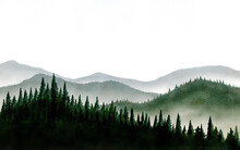Watercolor Painting Landscape Mountain Pine Tree Forest In Morning With Fog And Empty Space Of Sky.