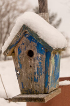 Bird House In The Snow