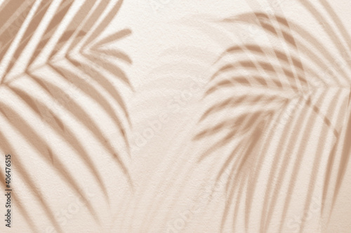 Light and shadow green leaves,palm leaf on sand color grunge wall concrete background.Silhouette flat lay abstract tropical leaf natural pattern summer texture with copy space.Soft image backdrop.
