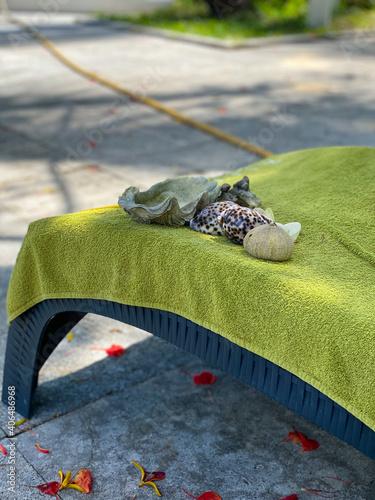 Tela Sea shells on a lime green towel on sunbed