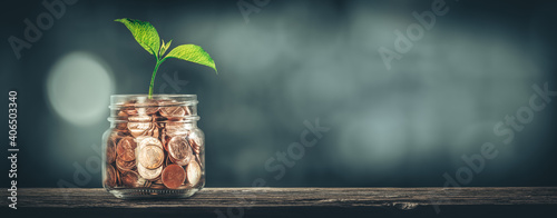 Plant Growing Out Jar Of Coins On Wooden Table - Investment Growth Concept #406503340