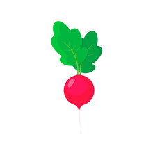 Radish Icon In Flat Style. Isolated Object, Logo. Vegetable From The Farm. Organic Food. Vector Illustration.