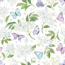 Seamless Watercolor White Elderberry Floral Background. Spring Elderflower And Butterflies Pattern Template