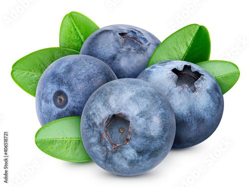 Slika na platnu Blueberry isolated on white background