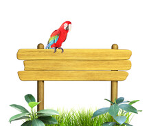 Old Wooden Board, Ara Macao Parrot And Leaves Of Tropical Plant