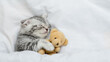 canvas print picture - Tiny kitten sleeps under warm white blanket on a bed at home and hugs favorite toy bear. Top down view. Empty space for text