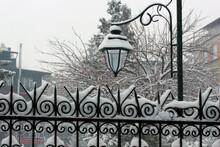 Snow On Garden Wrought Iron.