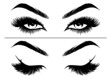 Hand-drawn Woman Sexy Makeup Look With Perfectly Eyebrows And Full Lashes