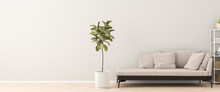 Chaiselongue Style Sofa In An Apartment With A Figue Tree And A Shelf. 3d Render.  Web Banner Format.