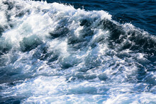 White Crest Of A Sea Wave. Selective Focus. Shallow Depth Of Field