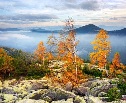 Poranek na szczycie góry Yavornik