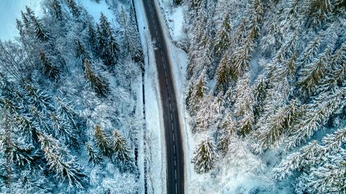 Fototapeta drone dans la forêt enneigée et plaine