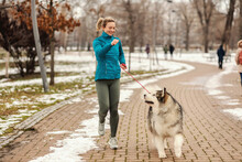 Woman Playing With Her Dog While Walking In Park On Snowy Winter Day. Pets, Snow, Friendship, Weekend Activities