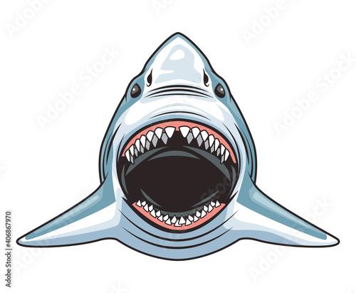 Obraz na płótnie shark animal wild head character colorful icon