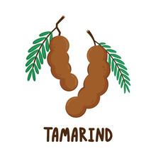 Tamarind Cartoon Vector. Tamarind On White Background.