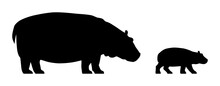 Black Silhouettes Of Standing Hippopotamus And Calf Isolated On White Background. Vector Illustration