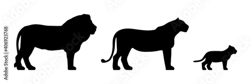 Fotografie, Obraz Black silhouettes of standing lion, lioness and cub isolated on white background
