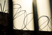 Looking Through Bars At Barbed Wire Fence