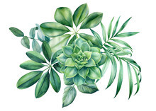 Floral Bouquet. Leaves Of Tropical Plants On White Background, Watercolor Botanical Illustration. Jungle Design