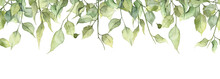 Long Seamless Banner With Hand Painted Watercolor Green Leaves
