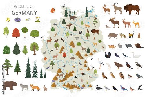 Fotografía Flat design of Germany wildlife