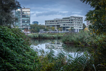 Captured On 18Oct2020 In Amsterdam By Jolene Den Boer Eggermont, Jo Photo Projects.