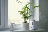 Humidifier and flower Chamaedorea in pot on window. Increase in air humidity in room or office