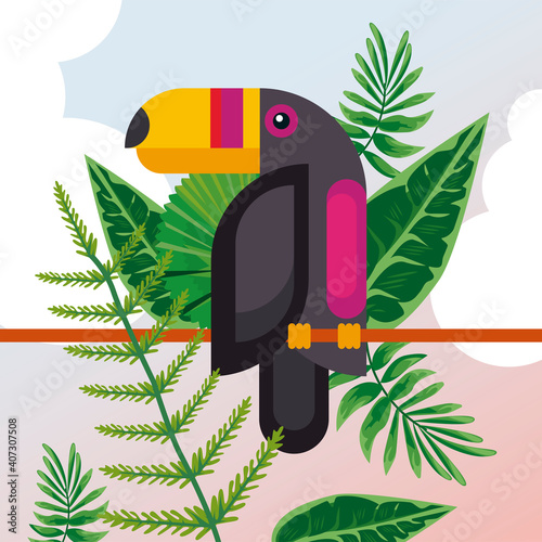 Fototapeta premium wild toucan bird animal exotic character with leafs