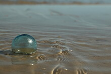 Glass Float For A Fishing Net On The Beach Caught In The Tide; Ripples In The Water