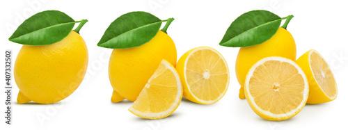 Obraz na plátně Lemon isolated on white background