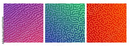 Web - fototapety na wymiar