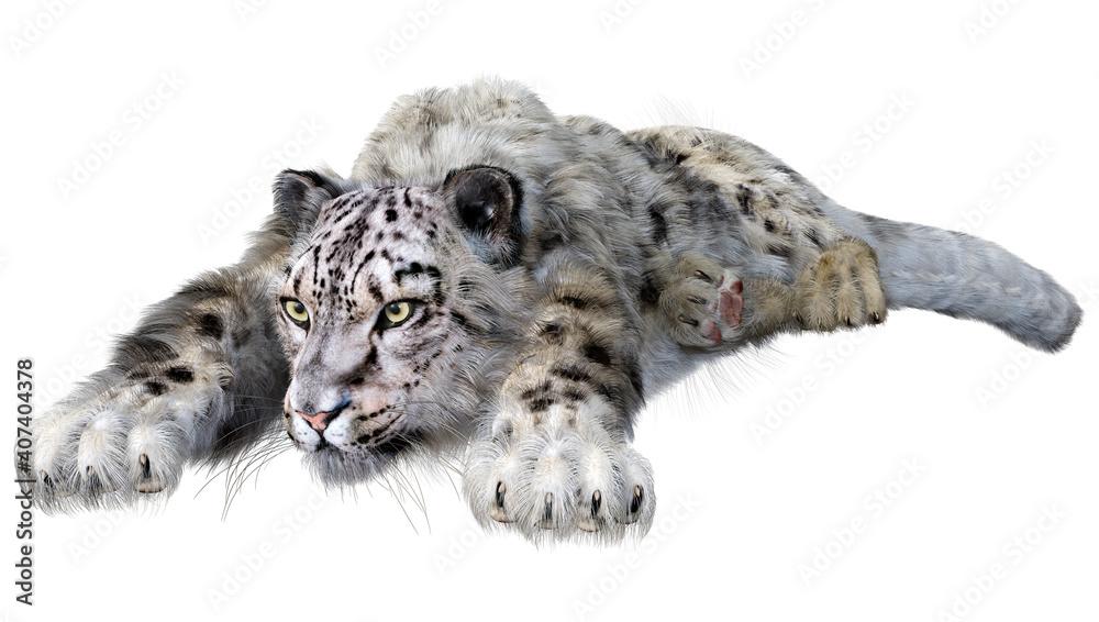 Fototapeta 3D Rendering Snow Leopard on White