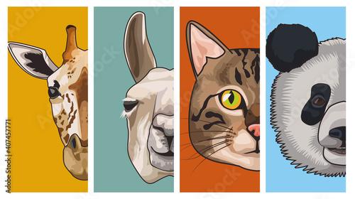 Fototapeta premium bundle of four animals domestics and wild set icons