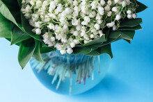 Bouquet Of White Lilies Of The Valley In Green Leaves In A Glass Vase On A Soft Blue Background. Selective Focus. Closeup View