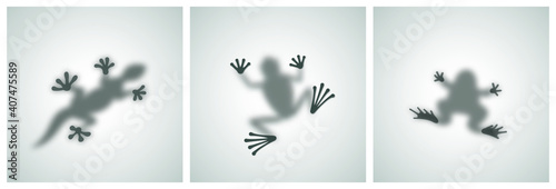 Photo Diffuse Reptiles Silhouettes Shadow Abstract Vector Images Set