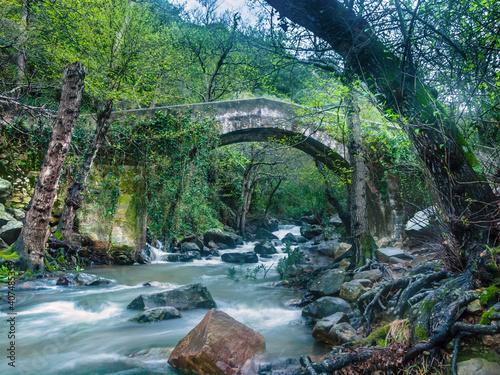 Obraz na płótnie Bridge over the river Rio de la Miel Parque natural de los alcornocales, Andal