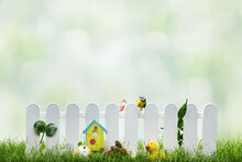 Spring Grass And Wooden Fence With Narcissus And Easter Decoration On Cloudy Sky